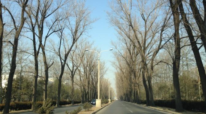 Beijing traffic woes